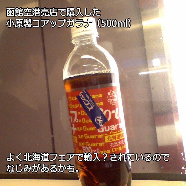 (E型)自画像+2013函館旅行よもやま話